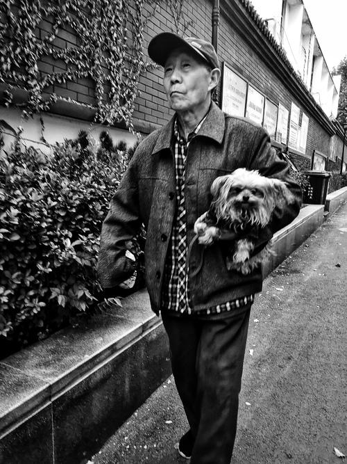 一日一片 老人与狗