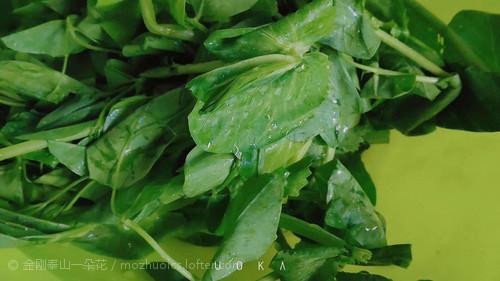 绿菜市里有什么。