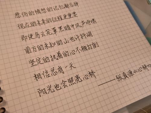 分享一些最近喜欢的句子 新手小...