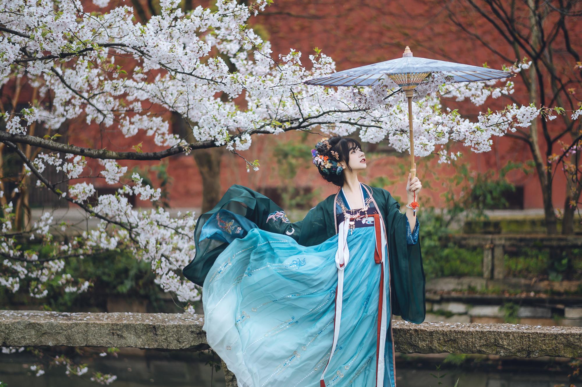 春花集 III 拍着拍着下起了雨插图(6)
